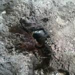 szennyvíz akna (3)